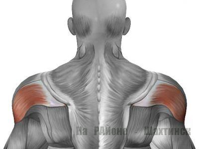 Мышца, которую не видно - задняя дельта. Как прокачать?