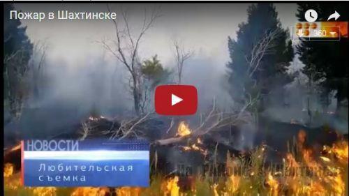 Пожар в лесопосадке