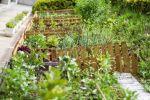 Немного советов садоводам и огородникам