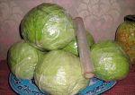 Храним капусту