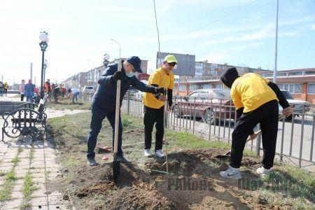 Наш город принял участие в областной молодежной экологической акции «Jasyl Aimaq»