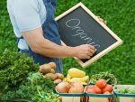 Основные правила экологического земледелия