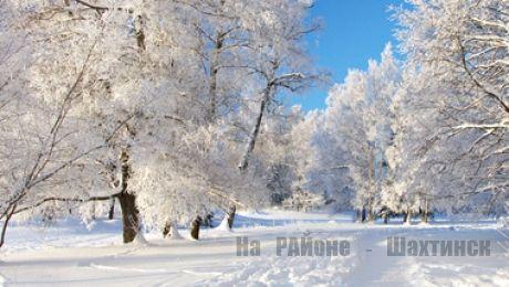 Метеорологи сделали прогноз на эту зиму
