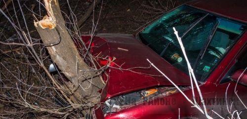 Авто врезалось в дерево возле здания полиции в Караганде: водитель погиб