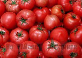 Рецепт удобрения для томатов
