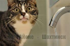 Где вода?