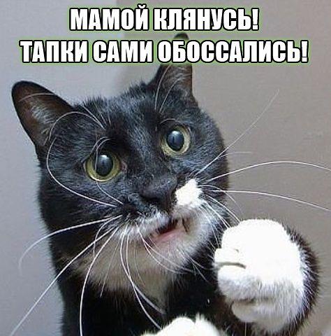 getimage1.jpg
