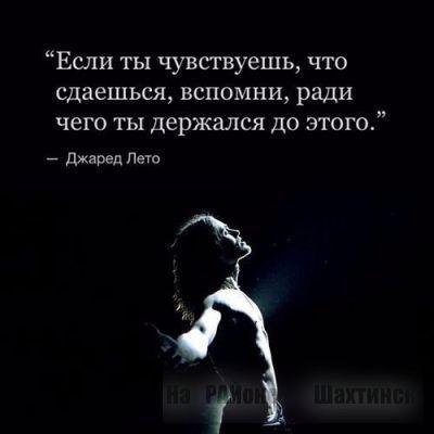 Цитата
