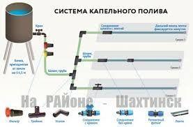 shema_kapelnogo_poliva2. jpg (11. 07 Kb)